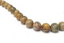 Orange Crazy Lace Agate (Natural) Smooth Round Gemstone Beads
