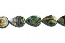 Paua Shell/Abalone And Resin (Assembled) Flat Teardrop Beads
