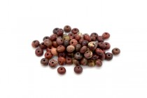 Apple Jasper (Natural) Rondelle Gemstone Beads