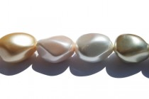 Mother of Pearl, Pearlized Shell, Coated, Nugget Beads, 15x20mm,Multi,3Y