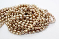 Dark Champagne (Dyed) Rice Shaped Freshwater Pearl Beads