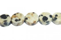 Dalmatian Jasper (Natural) Coin Gemstone Beads
