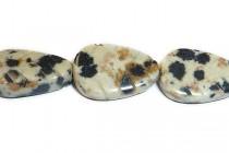 Dalmatian Jasper (Natural) Carved Leaf Gemstone Beads