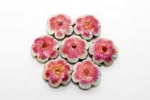 Enamel Flower - Six Petal (Pink/White)