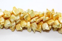 Square ( Top Drilled ) Freshwater Pearl, Yellow,Gold, ( Dyed  ) 12x15mm