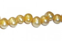 Gold (Dyed) Top Drilled Potato Freshwater Pearl Beads