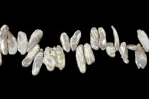 Keshi / Top Drilled Stick Freshwater Pearl - Champagne,Beige,Light  (Dyed ) 5x14mm-7x18mm