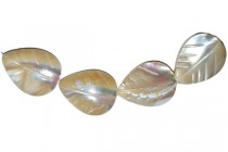 Mother of Pearl, Leaf, Shell Beads, Natural