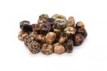 Poppy Jasper (Natural) Six Sided Drum Gemstone Beads