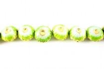 Enamel Lime Green & White Floral Beads - Puffed Coin