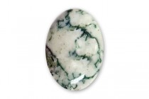 Tree Agate  (Natural ) A Grade Oval Cabochon