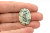 Tree Agate (Natural) Oval Flat Back Gemstone Cabochon